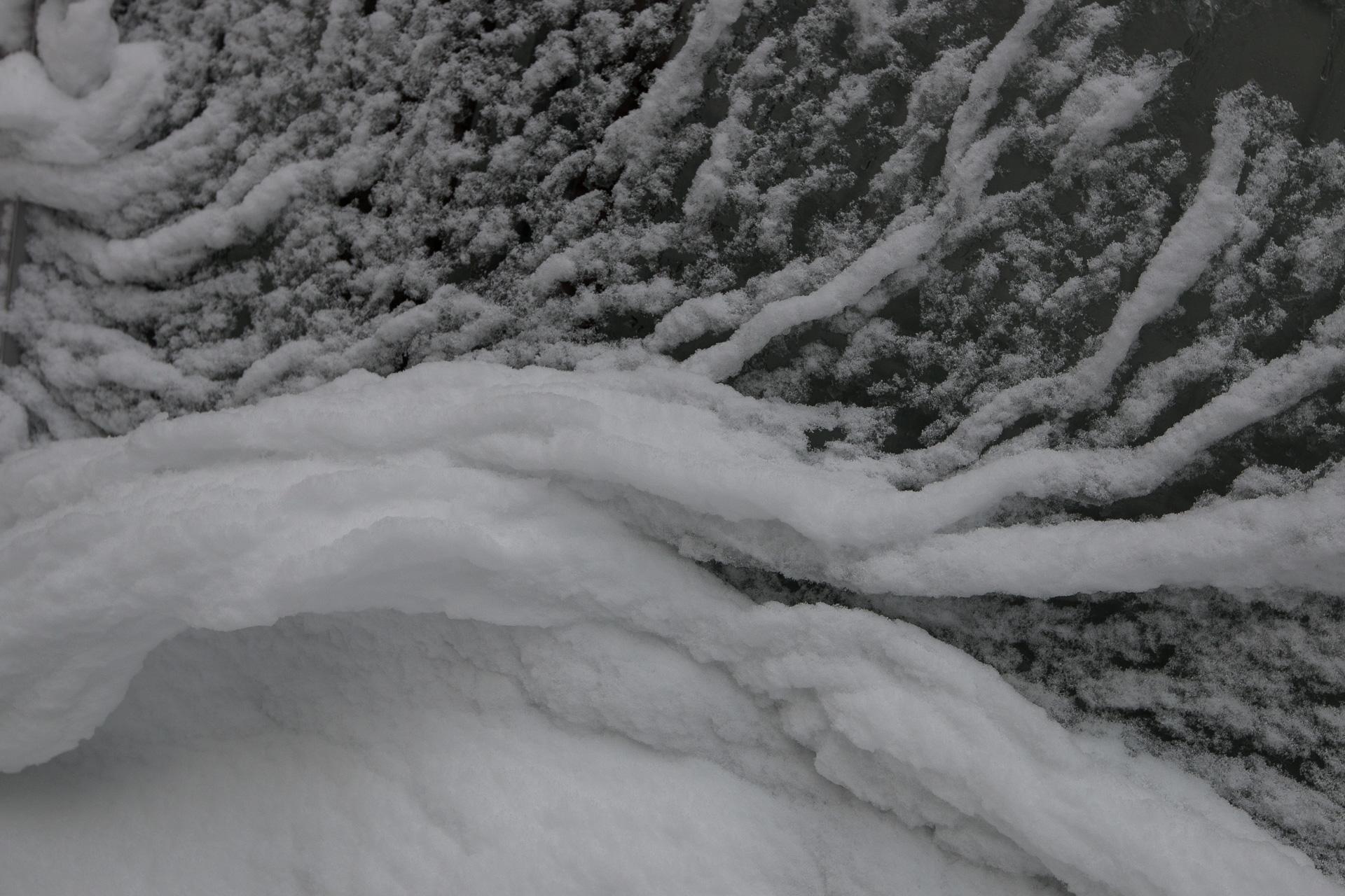 Haiku des Monats: Eisige Wellen brechen sich stürzend über ihren Schatten.