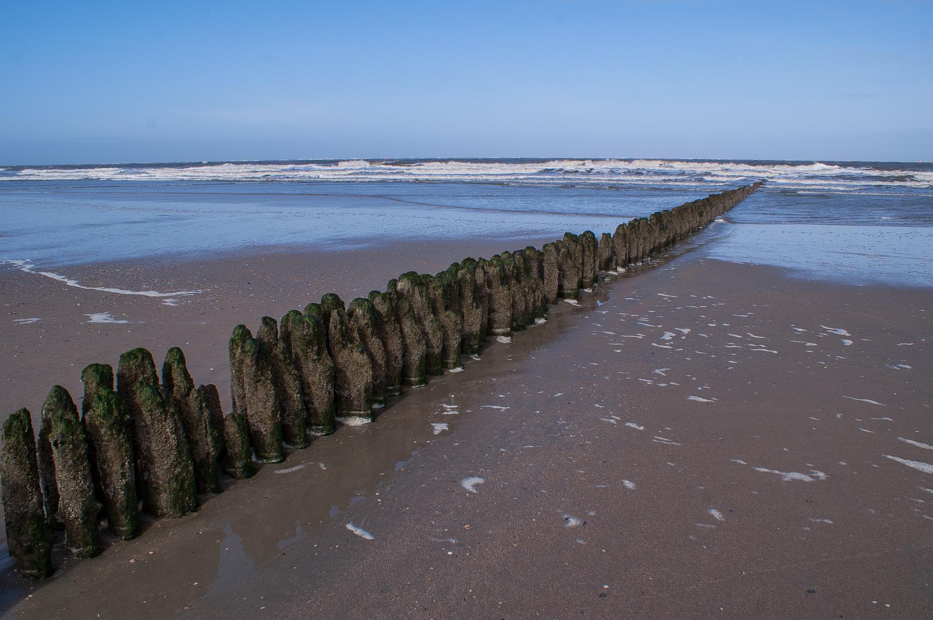 Ich lausche den Wellen - mein Ohr - auf die warmen Klippen gepreßt ⛩ Yaketeiru - shou ni mimi tsuke - nami wo kiku ⛩ (Shinohara, Bon