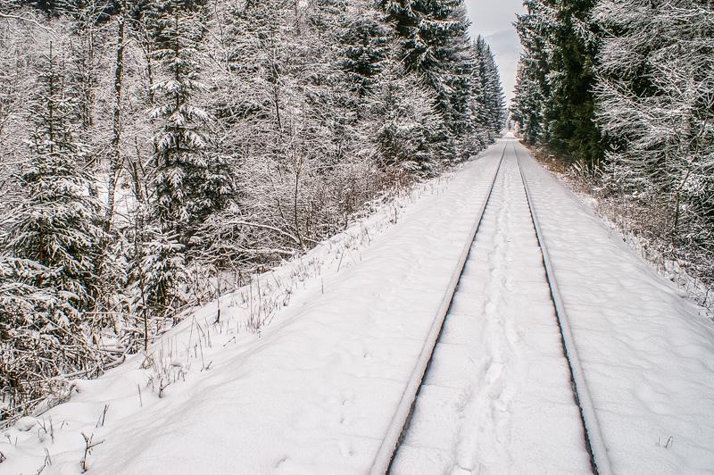 Heut beschaut' ich mir ⛩ erst den frischgefallen Schnee ⛩ dann erst wusch ich mich! ⛩ (Rokushi)
